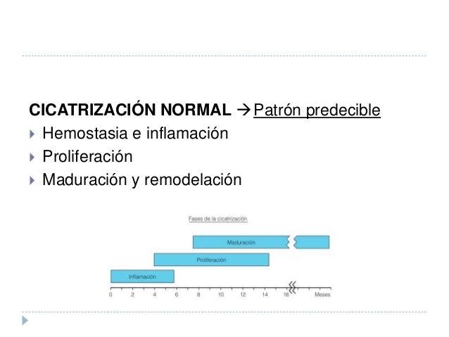 CICATRIZACIÓN NORMAL Patrón predecible  Hemostasia e inflamación  Proliferación  Maduración y remodelación