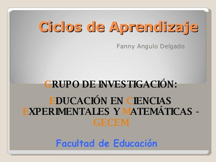 Ciclos de Aprendizaje Fanny Angulo Delgado G RUPO DE INVESTIGACIÓN: E DUCACIÓN EN  C IENCIAS  E XPERIMENTALES Y  M ATEMÁTI...