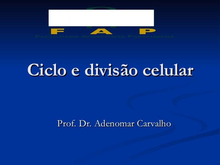 Ciclo e divisão celular Prof. Dr. Adenomar Carvalho