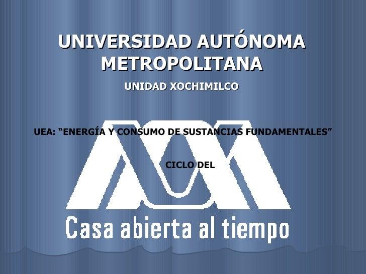"""UNIVERSIDAD AUTÓNOMA METROPOLITANA UNIDAD XOCHIMILCO UEA: """"ENERGÍA Y CONSUMO DE SUSTANCIAS FUNDAMENTALES"""" CICLO DEL"""