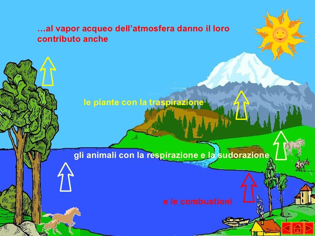 Eccezionale Il ciclo dell'acqua | imparo ZL94