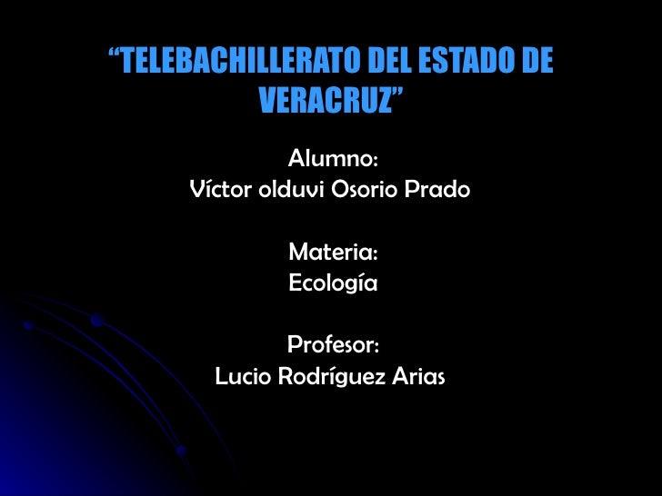 """ TELEBACHILLERATO DEL ESTADO DE VERACRUZ"" Alumno: Víctor olduvi Osorio Prado  Materia: Ecología Profesor: Lucio Rodríguez..."