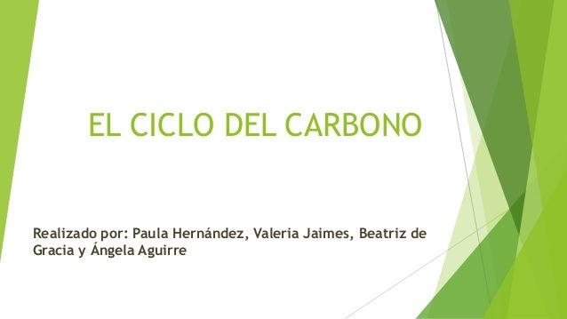 EL CICLO DEL CARBONO Realizado por: Paula Hernández, Valeria Jaimes, Beatriz de Gracia y Ángela Aguirre