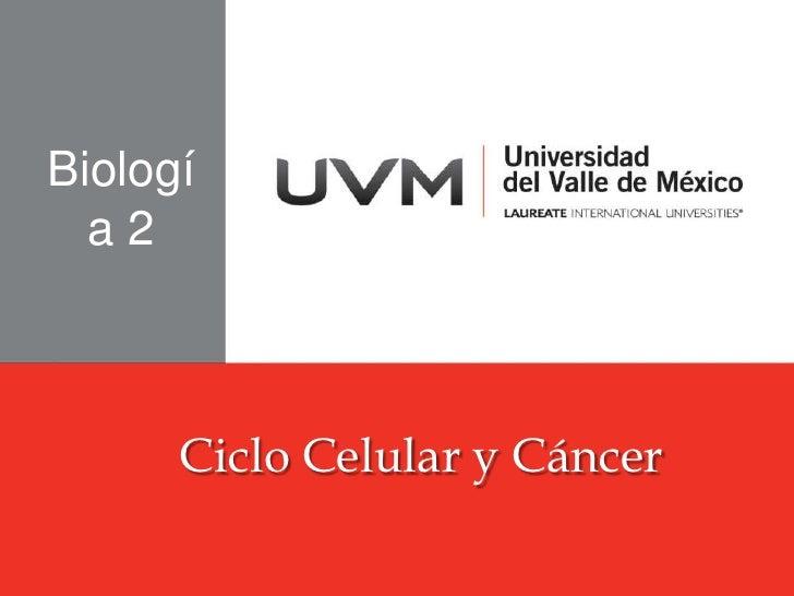 Biología 2<br />Ciclo Celular y Cáncer<br />