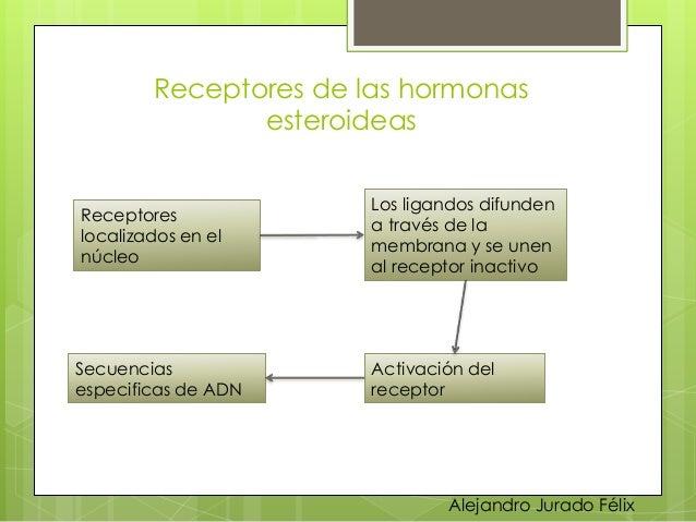 Ciclo celular y regulacion de la replicacion celular.ppt Slide 59