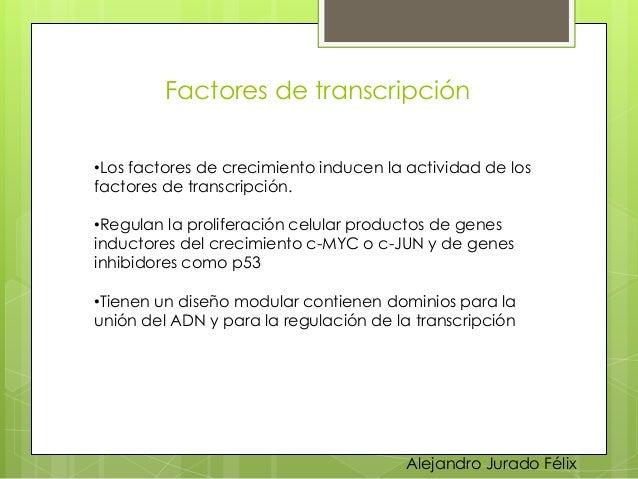 Factores de transcripción  •Los factores de crecimiento inducen la actividad de los factores de transcripción.  •Regulan l...