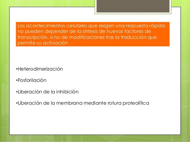 Ciclo celular y regulacion de la replicacion celular.ppt Slide 61