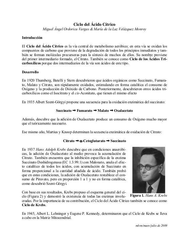 mlvm/maov/julio de 2009Ciclo del Ácido CítricoMiguel Ángel Ordorica Vargas & María de la Luz Velázquez MonroyIntroducciónE...