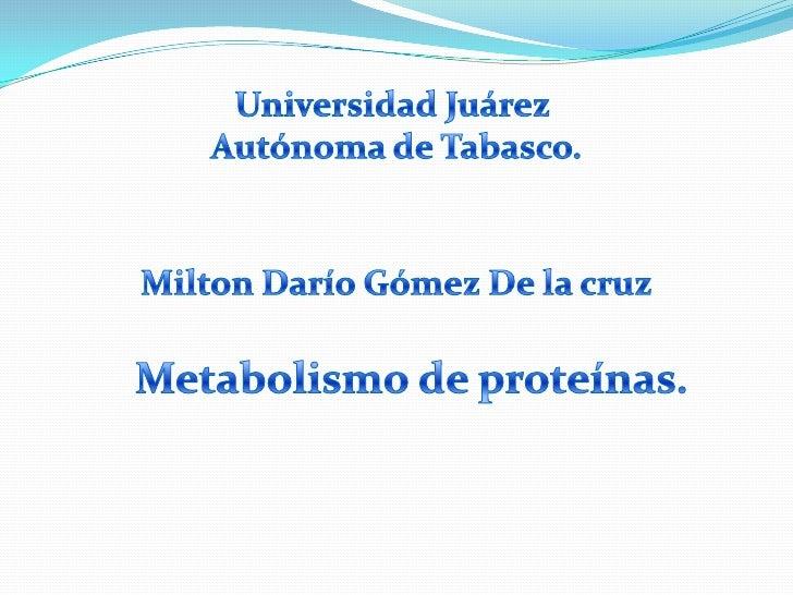 Universidad Juárez <br />Autónoma de Tabasco.<br />Milton Darío Gómez De la cruz<br />Metabolismo de proteínas.<br />