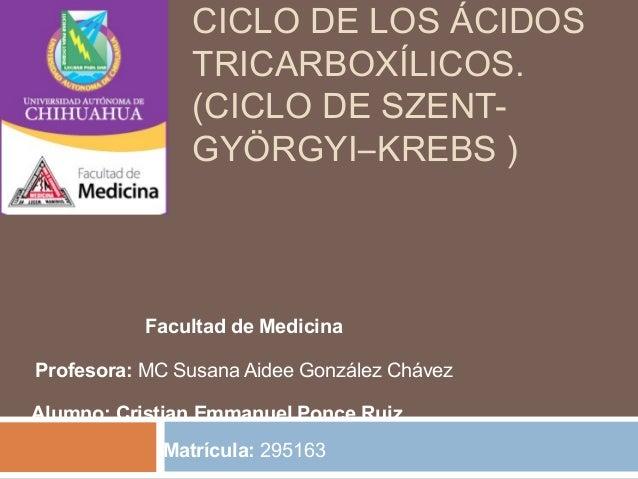 CICLO DE LOS ÁCIDOS  TRICARBOXÍLICOS.  (CICLO DE SZENT-GYÖRGYI–  KREBS )  Facultad de Medicina  Profesora: MC Susana Aidee...