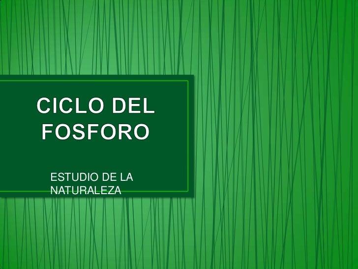 ESTUDIO DE LANATURALEZA