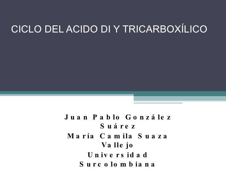 CICLO DEL ACIDO DI Y TRICARBOXÍLICO  Juan Pablo González Suárez María Camila Suaza Vallejo Universidad Surcolombiana Medic...