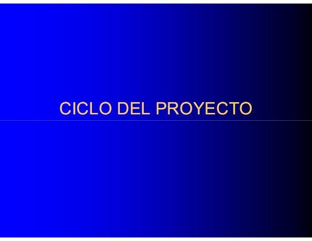 CICLO DEL PROYECTO