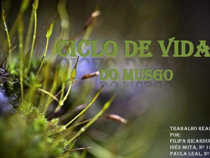 Ciclo de Vida<br />Do Musgo<br />Trabalho realizado por:<br />Filipa Ricardina, nº 16<br />Inês Mota, nº 18<br />Paula Lea...