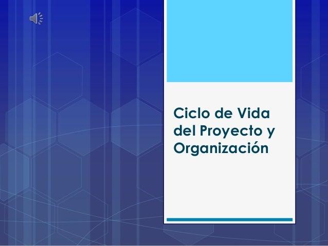 Ciclo de Vida del Proyecto y Organización