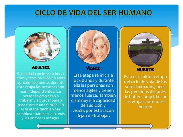 Ciclo Vital Del Ser Humano On Emaze: Necesitamos A Los Demas