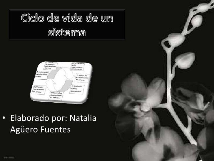 Ciclo de vida de un sistema<br />Elaborado por: Natalia Agüero Fuentes<br />
