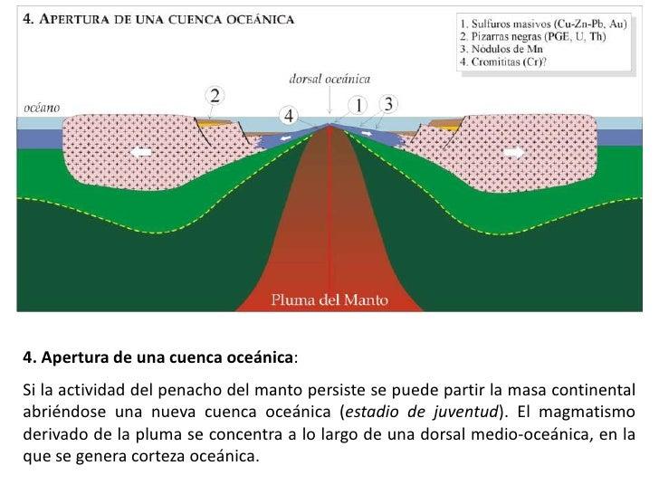 5. Cuando en uno de los márgenes de placa la corteza oceánica se desprende y se flexiona debido a su elevada densidad empi...