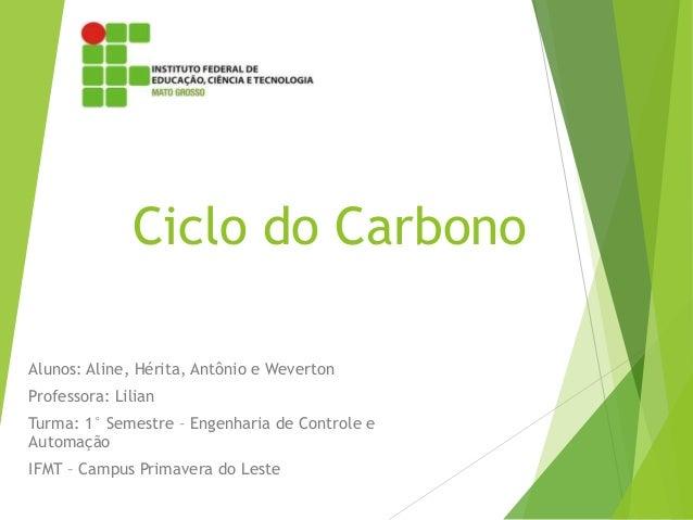 Ciclo do Carbono Alunos: Aline, Hérita, Antônio e Weverton Professora: Lilian Turma: 1° Semestre – Engenharia de Controle ...