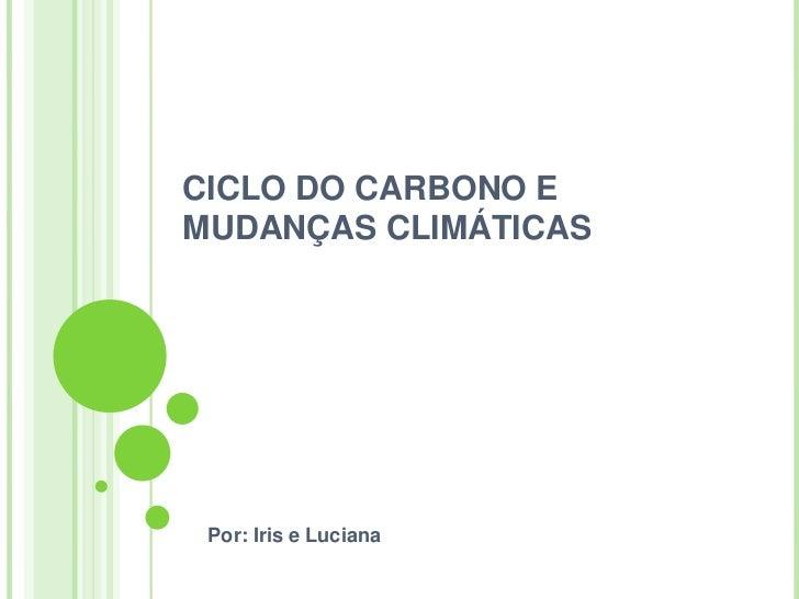 CICLO DO CARBONO EMUDANÇAS CLIMÁTICAS Por: Iris e Luciana