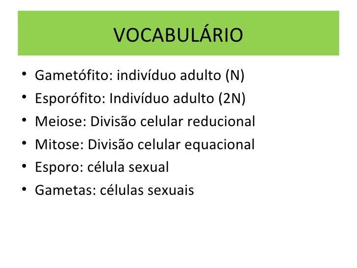 VOCABULÁRIO•   Gametófito: indivíduo adulto (N)•   Esporófito: Indivíduo adulto (2N)•   Meiose: Divisão celular reducional...
