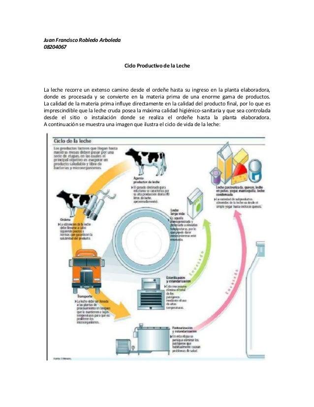Circuito Productivo De La Leche : Ciclo productivo de la leche