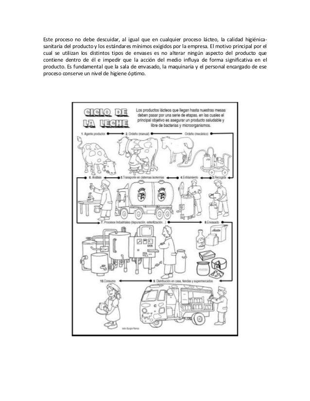Circuito Yerba Mate : Circuito productivo yerba mate para niños ciclo