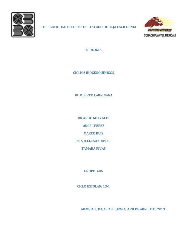 COLEGIO DE BACHILLERES DEL ESTADO DE BAJA CALIFORNIAECOLOGIACICLIOS BIOGEOQUIMICOSHUMBERTO LARRINAGARICARDO GONZALESANGEL ...
