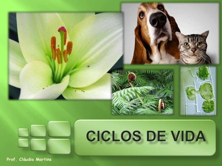 Prof. Cláudia Martins