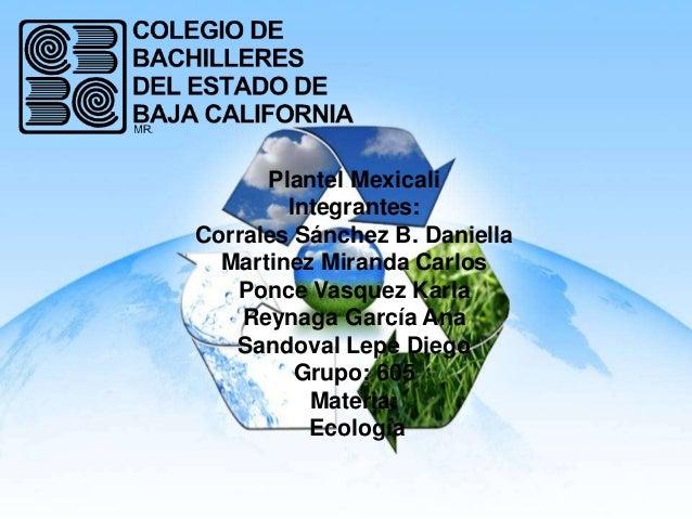 Plantel MexicaliIntegrantes:Corrales Sánchez B. DaniellaMartinez Miranda CarlosPonce Vasquez KarlaReynaga García AnaSandov...