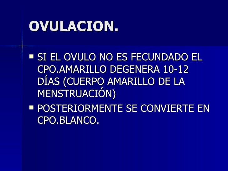 OVULACION. <ul><li>SI EL OVULO NO ES FECUNDADO EL CPO.AMARILLO DEGENERA 10-12 DÍAS (CUERPO AMARILLO DE LA MENSTRUACIÓN) </...