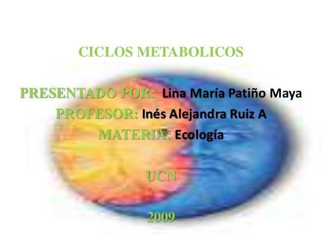 CICLOS METABOLICOS PRESENTADO POR: Lina María Patiño Maya PROFESOR: Inés Alejandra Ruiz A MATERIA: Ecología UCN 2009