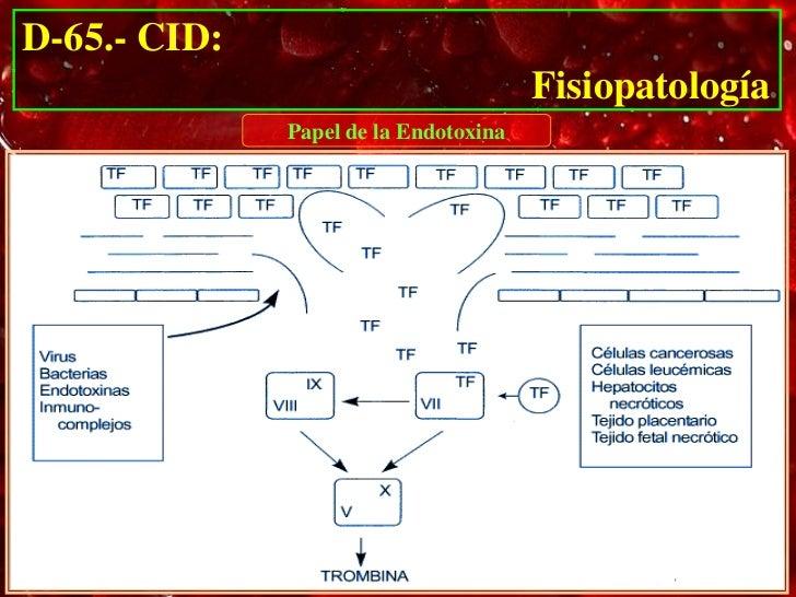 D-65.- CID:                                               Fisiopatología                      Papel de la Endotoxina• 20% ...