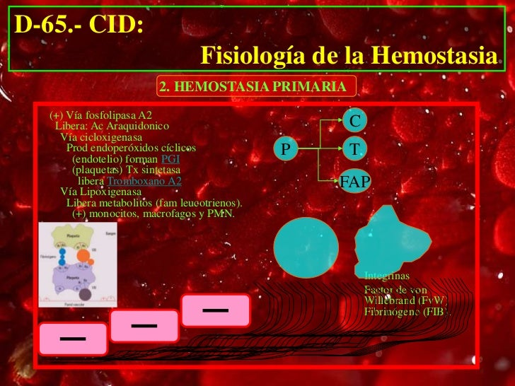 D-65.- CID:                                  Fisiología de la Hemostasia                         2. HEMOSTASIA PRIMARIA  (...