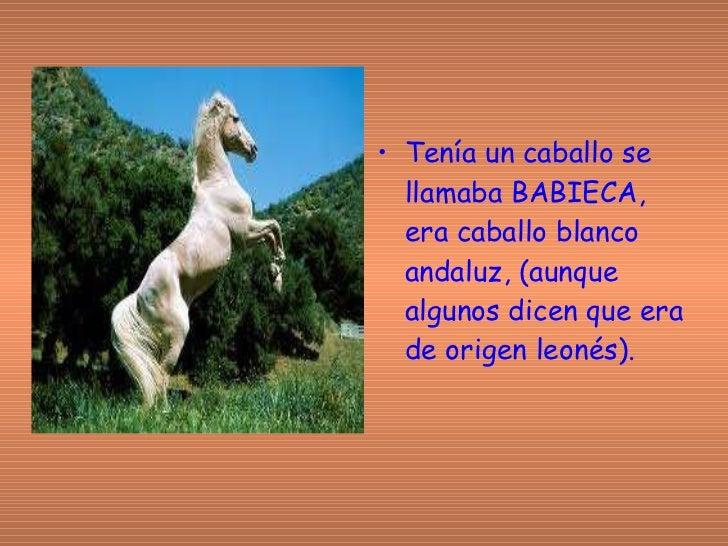 <ul><li>Tenía un caballo se llamaba BABIECA, era caballo blanco andaluz, (aunque algunos dicen que era de origen leonés). ...
