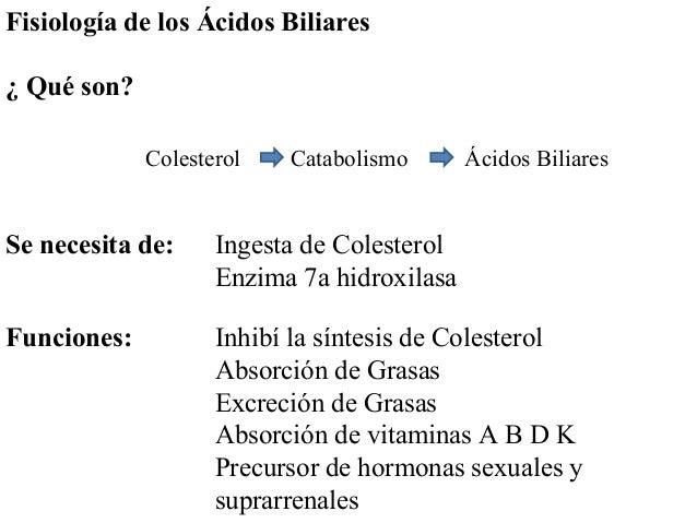Fisiología de los Ácidos Biliares ¿ Qué son? Colesterol Catabolismo Ácidos Biliares Se necesita de: Ingesta de Colesterol ...