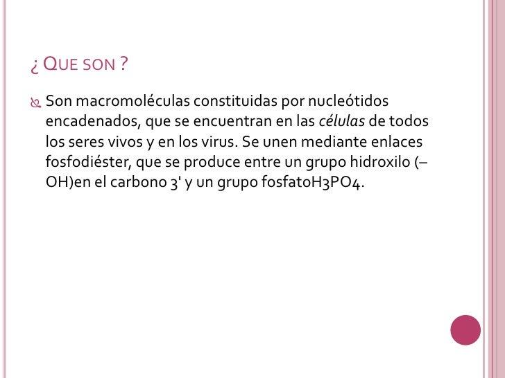 Acidos Nucleicos Slide 3