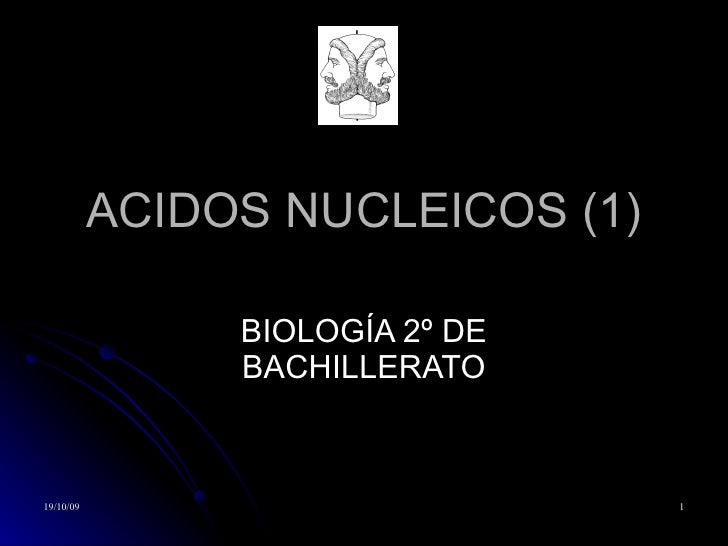 ACIDOS NUCLEICOS (1) BIOLOGÍA 2º DE BACHILLERATO