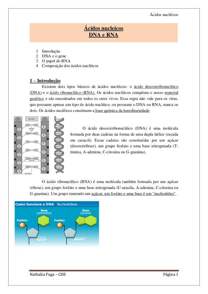 Ácidos nucléicos                               Ácidos nucleicos                                DNA e RNA   1   Introdução ...