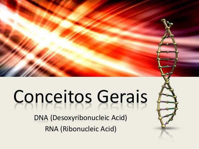 Ácidos Nucléicos (DNA e RNA) Slide 2