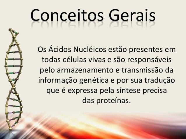 Ácidos Nucléicos (DNA e RNA) Slide 3