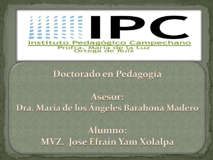 Comités Interinstitucionales para la Evaluación de la             Educación Superior, A.C.