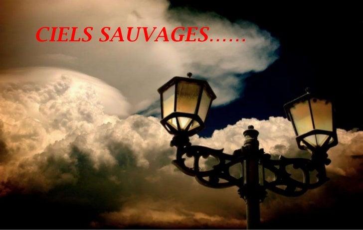 CIELS SAUVAGES……