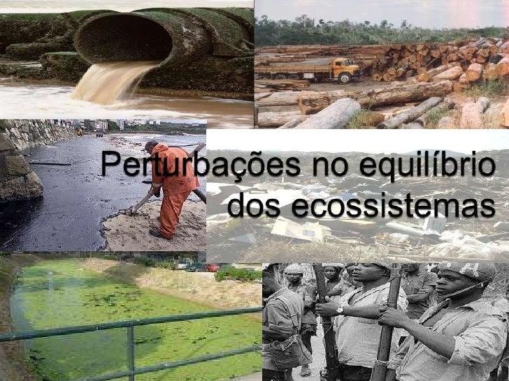 Mariana  Baptista<br />Mafalda Marques<br />Perturbações no equilíbrio dos ecossistemas<br />
