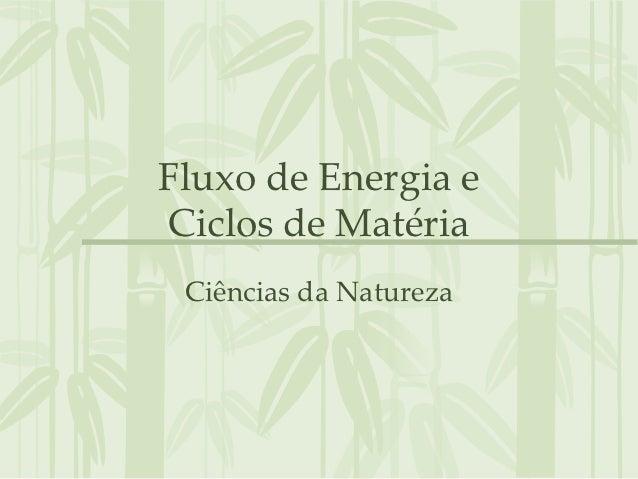 Fluxo de Energia eCiclos de Matéria Ciências da Natureza