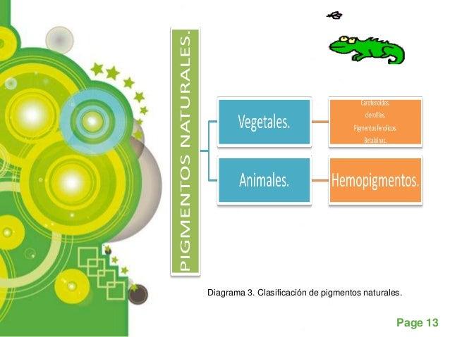 Diagrama 3. Clasificación de pigmentos naturales.                                               Page 13