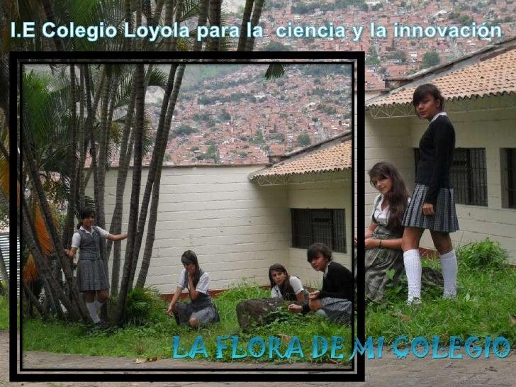 I.E Colegio Loyola para la  ciencia y la innovación<br />LA FLORA DE MI COLEGIO<br />