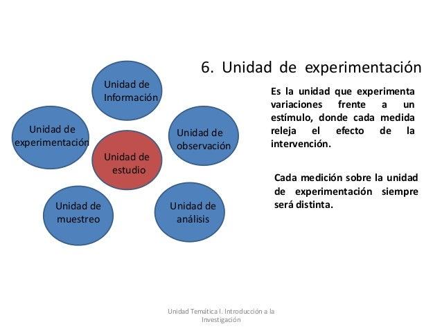 6. Unidad de experimentación                    Unidad de                                                                 ...
