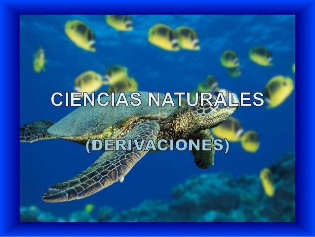 CIENCIAS NATURALES BIOLOGÍA ZOOLOGÍA BOTÁNICA BACTERILOGÍA MICROBIOLOGÍA HERPETOLOGÍA MICOLOGÍA PARASITOLOGÍA CITOLOGÍA GE...