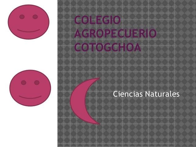 COLEGIO AGROPECUERIO COTOGCHOA  Ciencias Naturales